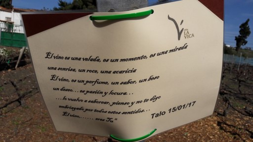 homenaje a la viña La Vica.