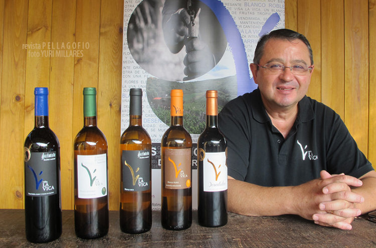 vinos-la-vica-5017-1-750x495